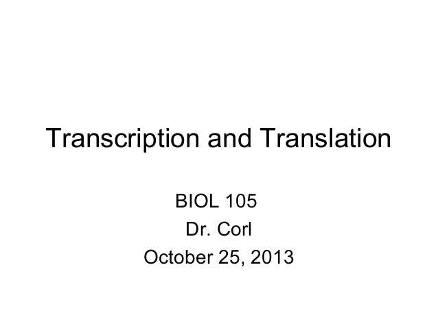 Transcription and Translation BIOL 105 Dr. Corl October 25, 2013