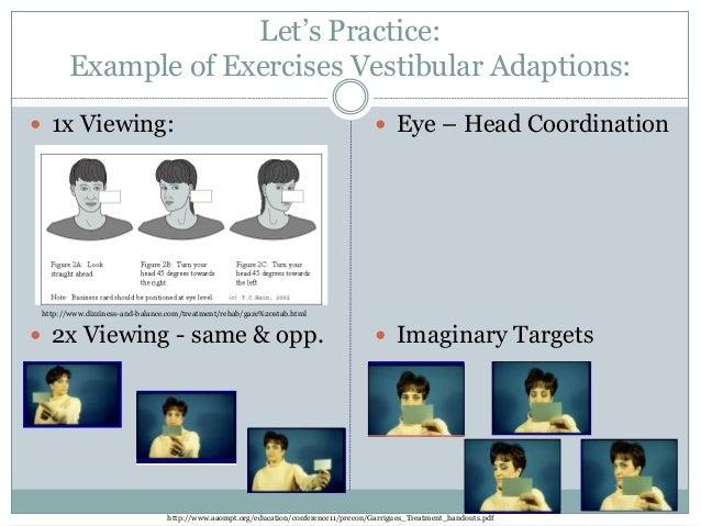 Image Gallery habituation exercises handout