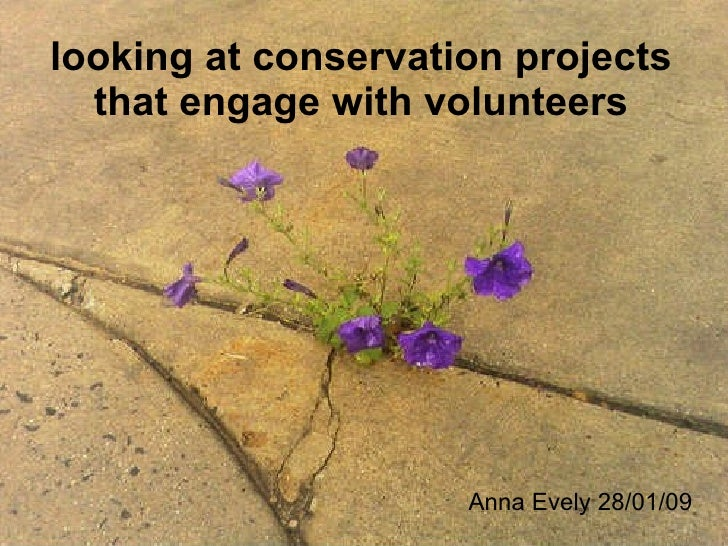 Anna Evely 28/01/09 looking at conservation projects that engage with volunteers