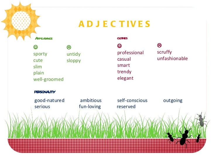 28537362 appearance and personality adjectives exercise