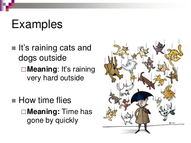 Meaning Of It S Raining Cats And Dogs