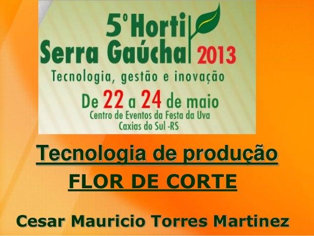 Tecnologia de produção FLOR DE CORTE Cesar Mauricio Torres Martinez