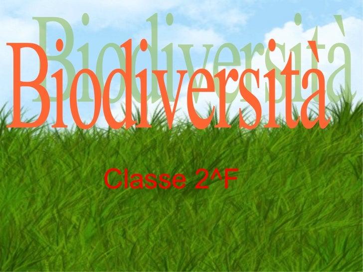 Classe 2^F   Biodiversità
