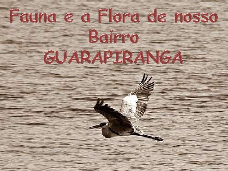 A FAUNA E A FLORA DAREPRESA DO GUARAPIRANGA HOJE É MUITO DEGRADADADEVIDO A MÁ PRESERVAÇÃO   DA REAPRESA ENTAO, A  DEZENAS ...