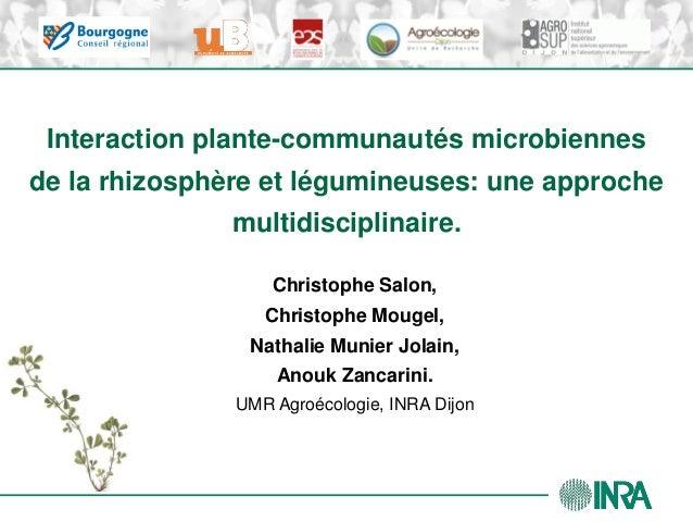 Interaction plante-communautés microbiennesde la rhizosphère et légumineuses: une approche               multidisciplinair...