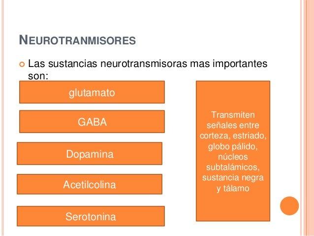 NEUROTRANMISORES  Las sustancias neurotransmisoras mas importantes son: glutamato GABA Dopamina Acetilcolina Serotonina T...