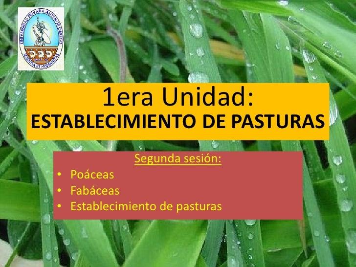1era Unidad:ESTABLECIMIENTO DE PASTURAS               Segunda sesión:  • Poáceas  • Fabáceas  • Establecimiento de pasturas
