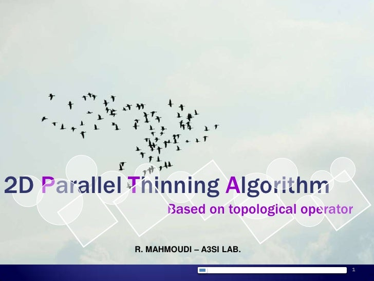 1<br />2D Parallel Thinning Algorithm<br />Based on topological operator<br />R. MAHMOUDI – A3SI LAB.<br />