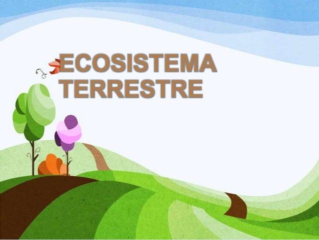 ECOSISTEMA TERRESTRE Un ecosistema terrestre, es el conjunto de los organismos vivos y su ambiente físico en un pedazo de...
