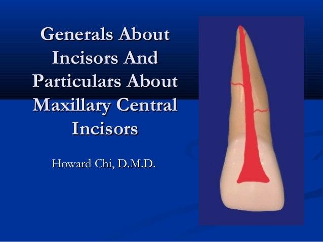 Generals AboutGenerals About Incisors AndIncisors And Particulars AboutParticulars About Maxillary CentralMaxillary Centra...