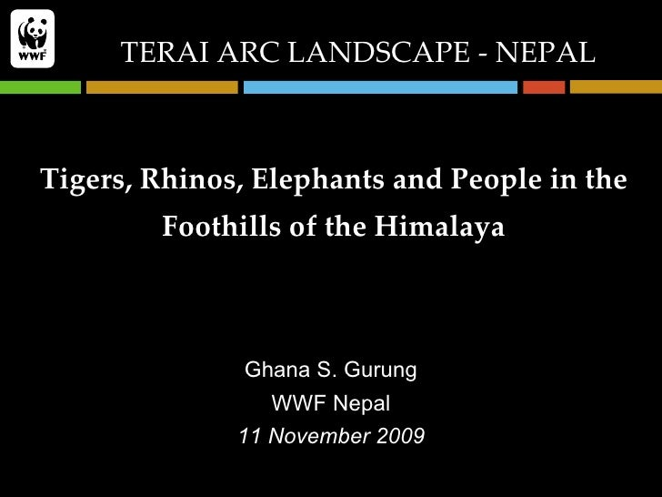 Tigers, Rhinos, Elephants and People in the Foothills of the Himalaya Ghana S. Gurung WWF Nepal 11 November 2009 TERAI ARC...