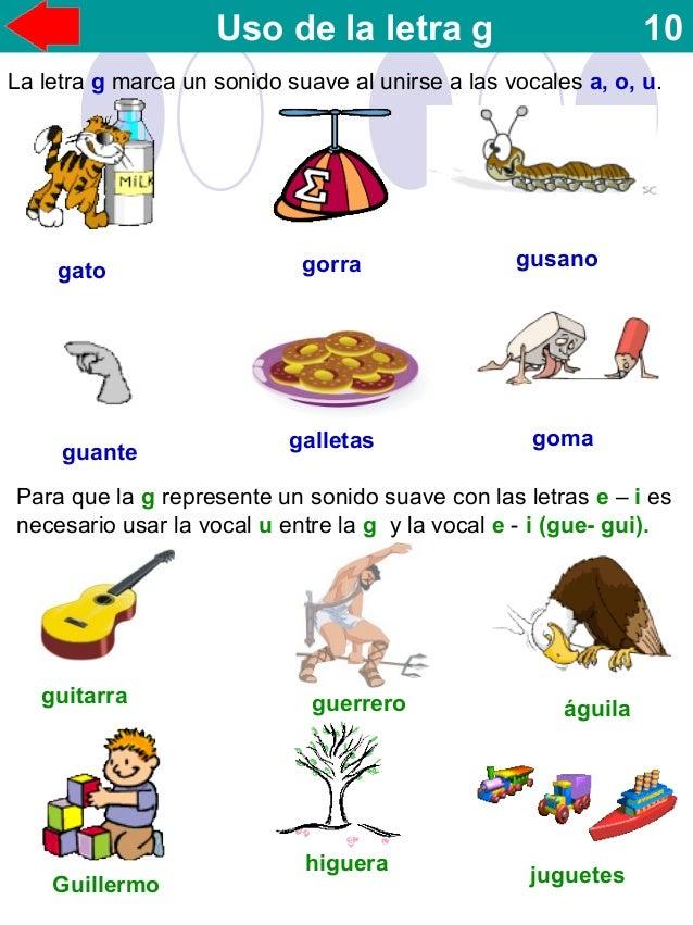 Animales con Y | Lista de los animales con la letra Y