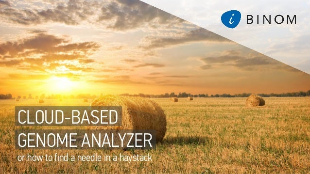 CLOUD-BASED GENOME ANALYZER or how to find a needle in a haystack