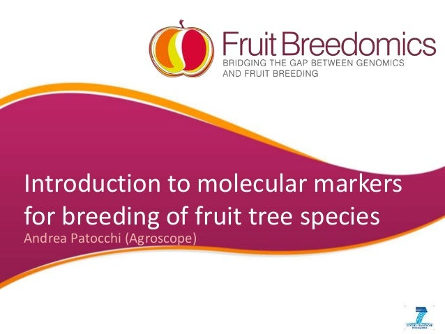 Introduction to molecular markers for breeding of fruit tree species Andrea Patocchi (Agroscope)