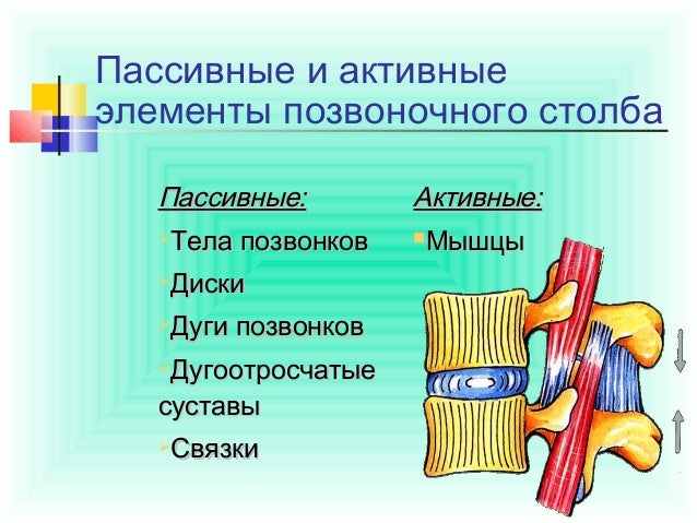 Пассивные и активные элементы