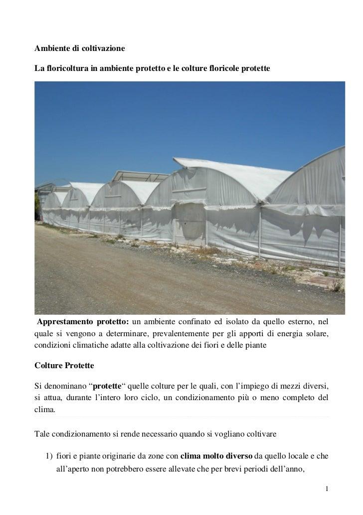 Ambiente di coltivazioneLa floricoltura in ambiente protetto e le colture floricole protette Apprestamento protetto: un am...