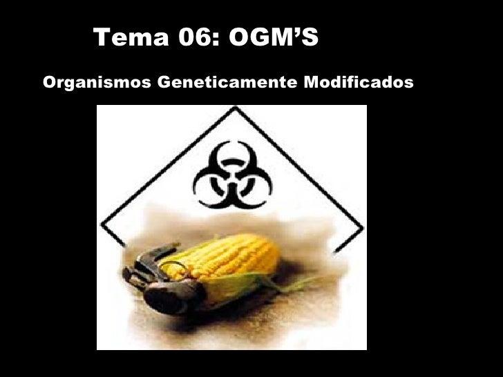 Tema 06: OGM'S Organismos Geneticamente Modificados