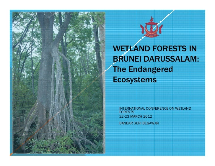 WETLAND FORESTS INBRUNEI DARUSSALAM:The EndangeredEcosystems INTERNATIONAL CONFERENCE ON WETLAND FORESTS 22-23 MARCH 2012 ...