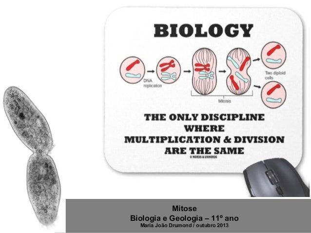 Mitose Biologia e Geologia – 11º ano Maria João Drumond / outubro 2013