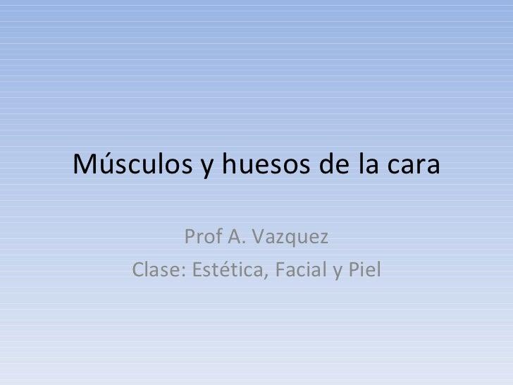 Músculos y huesos de la cara Prof A. Vazquez Clase: Estética, Facial y Piel