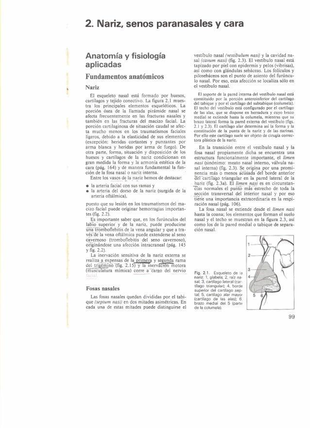 2. Nariz, senos paranasales y cara Anatomia y fisiologia aplicadas Fundamentos anatomicos Nariz El esqueleto nasal esta fo...