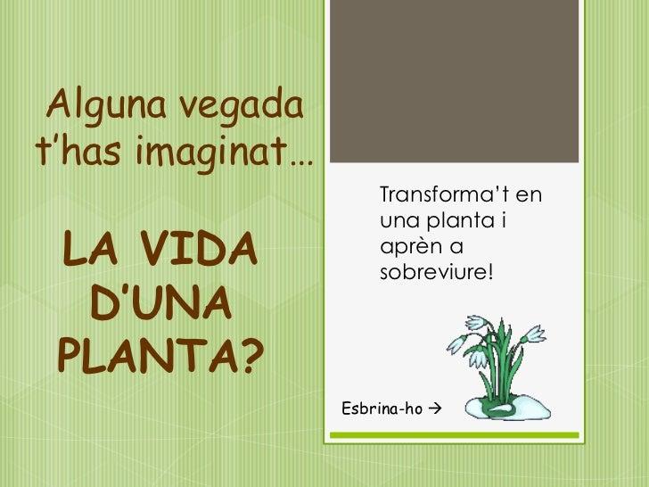 Alguna vegadat'has imaginat…                      Transforma't en                      una planta i LA VIDA              a...