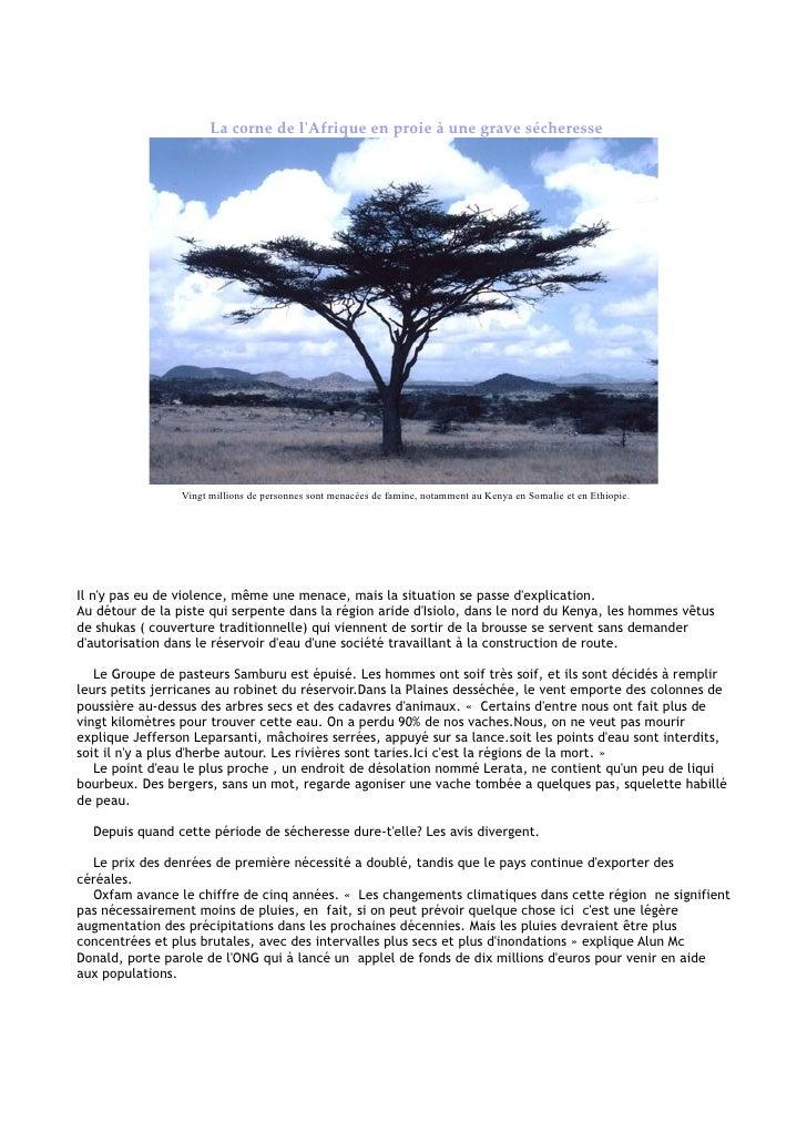 La corne de l'Afrique en proie à une grave sécheresse                      Vingt millions de personnes sont menacées de fa...
