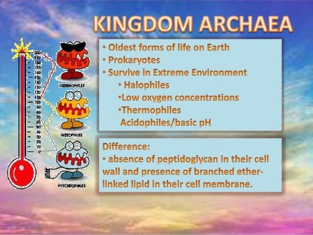 biology.. kingdoms