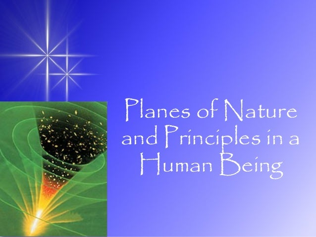 Planes of Nature and Principles in a Human Being