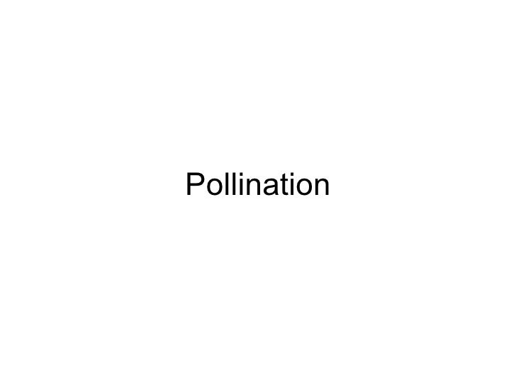 Chapter 16 Reproduction in Plants Lesson 2 - Pollination