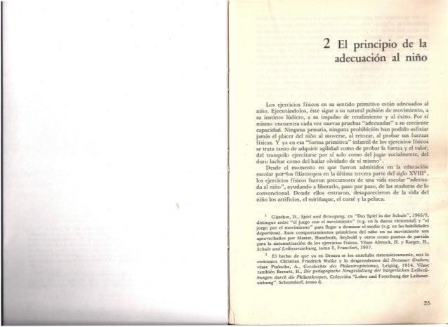 Principios generales de la Educaci n Primaria - Mundo Primaria