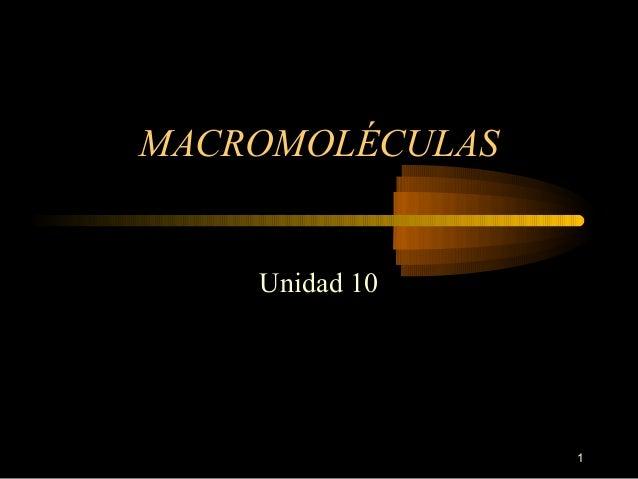 MACROMOLÉCULAS    Unidad 10                 1