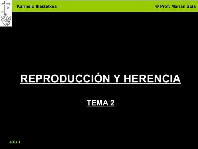 Karmelo Ikastetxea © Prof. Marian Sola 4DBH 1 REPRODUCCIÓN Y HERENCIA TEMA 2