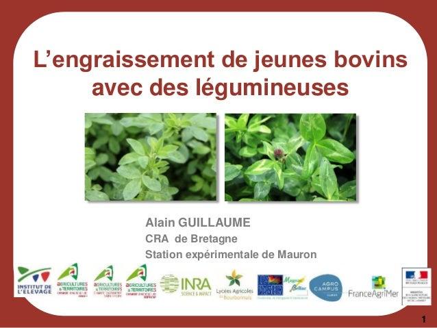 L'engraissement de jeunes bovins avec des légumineuses Alain GUILLAUME CRA de Bretagne Station expérimentale de Mauron 1