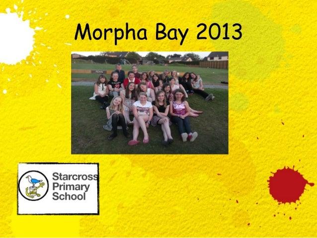 PUFFINS PHOTOS Morpha Bay 2013