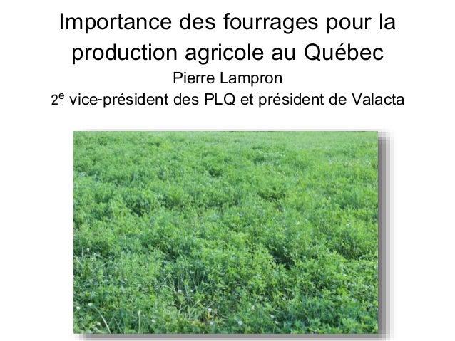 Importance des fourrages pour la  production agricole au Québec  Pierre Lampron  2e vice-président des PLQ et président de...