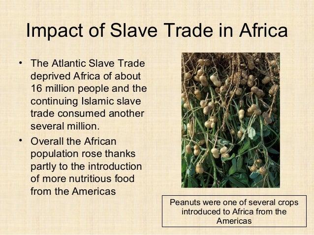 2 trans atlantic slave trade blackbirding 2014 for African crops and slave cuisine