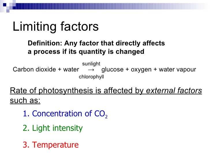 limiting factors on photosynthesis Questions ii: photosynthesis bio factsheet september 1998 number 25 1 1 limiting factors the rate of photosynthesis is slowed down or limited by many factors.