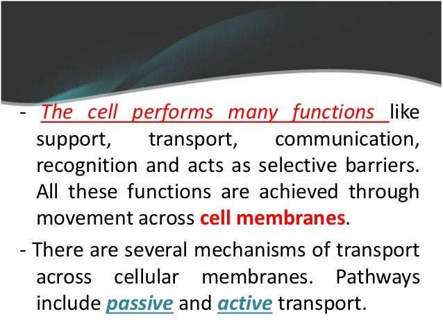 lab report on molecular movements transport across biological membranes As mentioned above, water can move across membranes however its movement through a lipid bilayer is relatively slow in many tissues, water moves across the membranes very quickly due to.