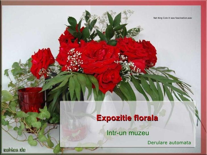 Expozitie florala Intr-un muzeu Derulare automata