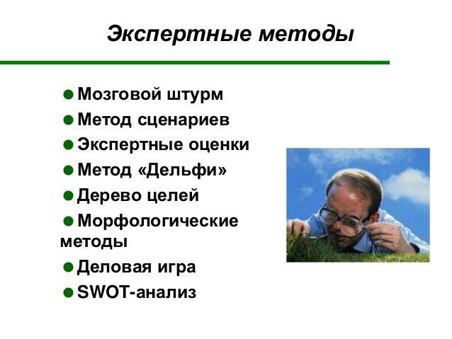 Экспертные методы Мозговой