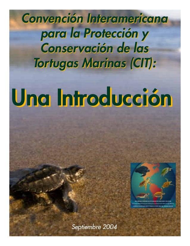 3.1 convencion interamericana-introduccion_baja_res