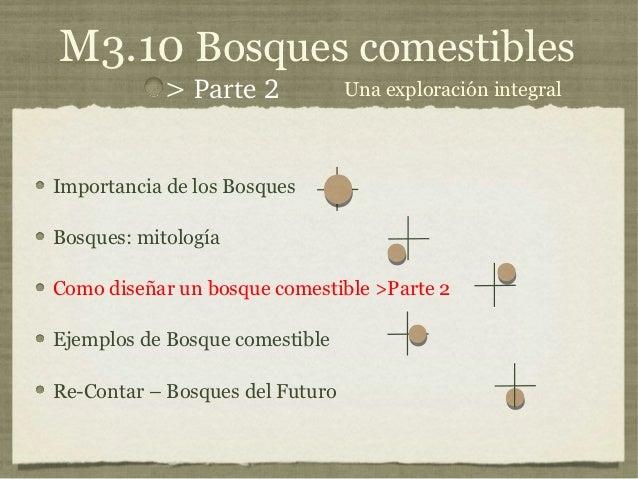 M3.10 Bosques comestibles           >Parte2             Una exploración integralImportancia de los BosquesBosques: mitol...