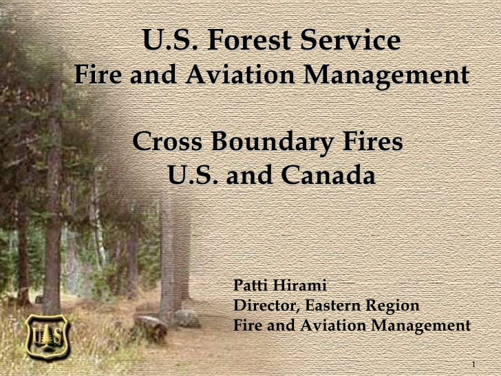 U.S. Forest Service Fire and Aviation Management Cross Boundary Fires  U.S. and Canada Patti Hirami Director, Eastern Regi...