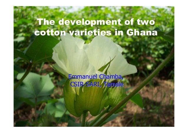 EmmanuelEmmanuel ChambaChamba,, CSIRCSIR--SARI, TamaleSARI, Tamale The development of two cotton varieties in Ghana