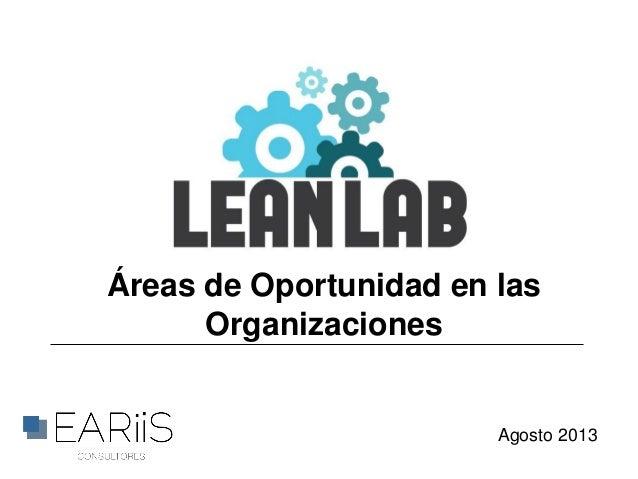 Áreas de Oportunidad en las Organizaciones Agosto 2013