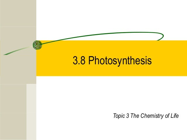 3.8 Photosynthesis Topic 3 The Chemistry of Life