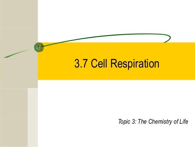 3.7 Cell Respiration Topic 3: The Chemistry of Life