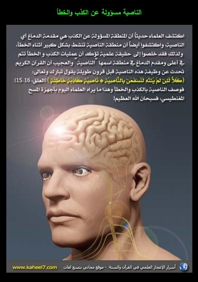 الموسوعة المصورة للإعجاز العلمي (3) 3-18-638