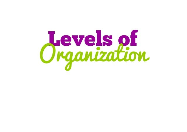 Levels of Organization (cell to organism)